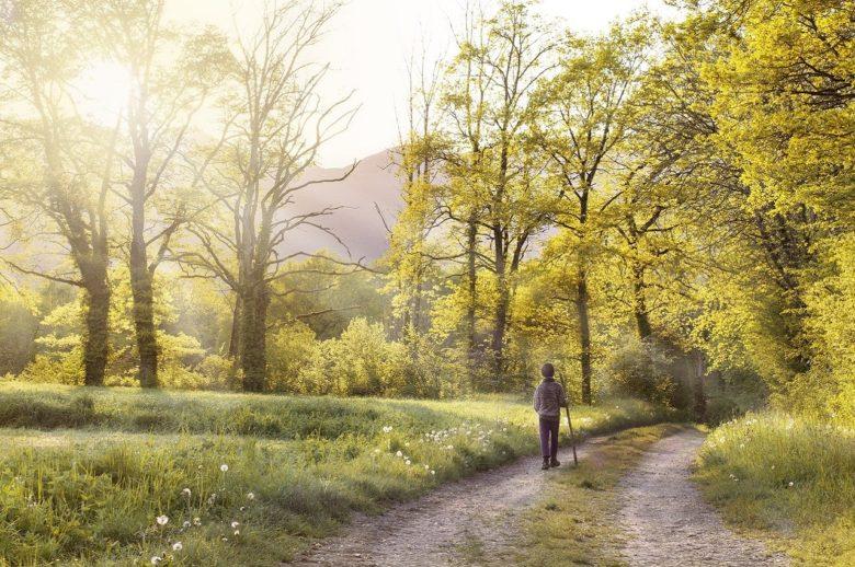 I motivi per camminare in campagna | Agriturismo La Brezza